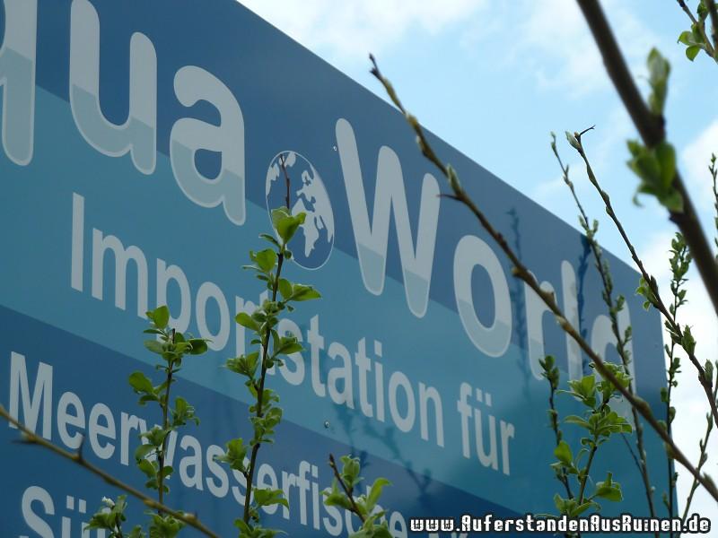 http://www.auferstandenausruinen.de/wp/wp-content/gallery/aqua-world/aquaworld4.jpg