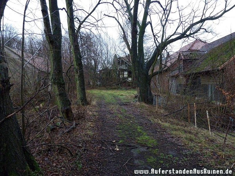 http://www.auferstandenausruinen.de/wp/wp-content/gallery/ausblick/p1130127.jpg