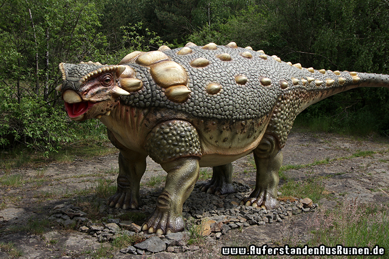 http://www.auferstandenausruinen.de/wp/wp-content/gallery/dinosaurier_park_muenchehagen/IMG_2695.JPG