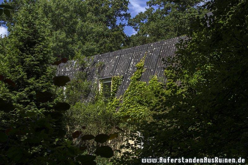 http://www.auferstandenausruinen.de/wp/wp-content/gallery/erziehungsheim/img_8922_1.jpg