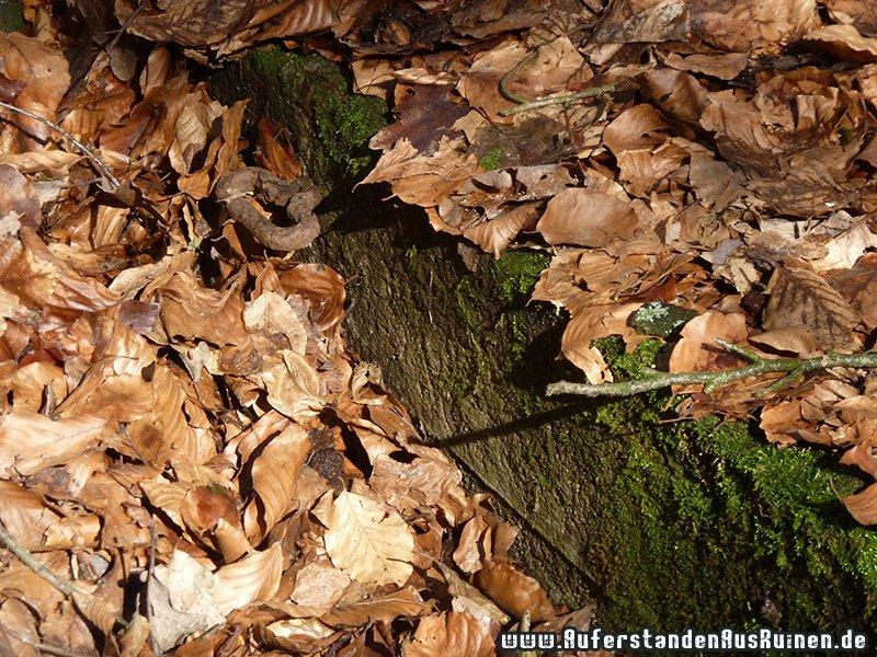 http://www.auferstandenausruinen.de/wp/wp-content/gallery/grosskaliber-schiessbahn/p1230396.jpg