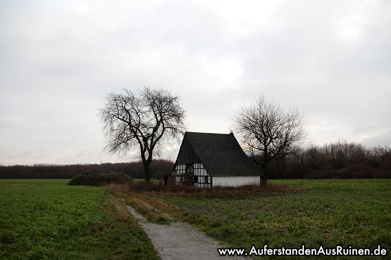 http://www.auferstandenausruinen.de/wp/wp-content/gallery/hexenhaus-2019/IMG_7751.JPG