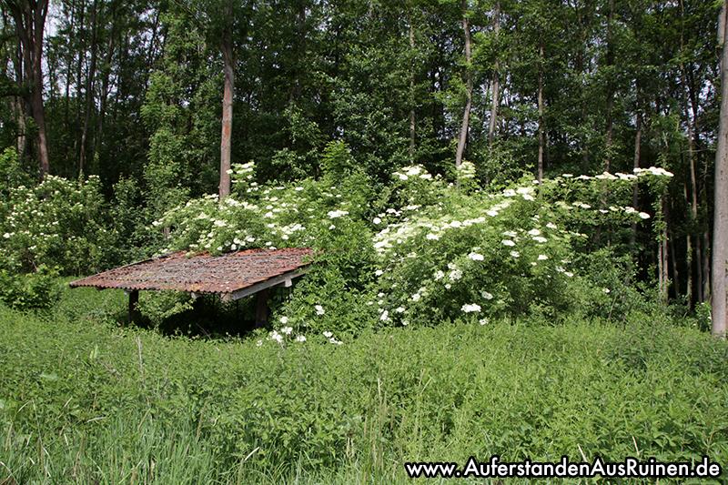 http://www.auferstandenausruinen.de/wp/wp-content/gallery/landwirtschaftlicher-unterstand/IMG_9825.JPG