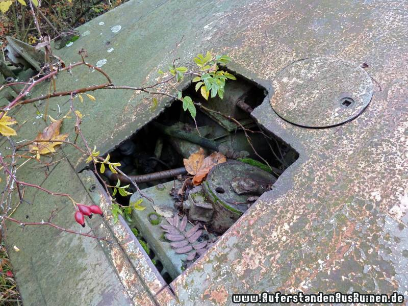 http://www.auferstandenausruinen.de/wp/wp-content/gallery/m16-flakpanzer/p1060800.jpg