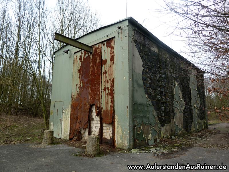 http://www.auferstandenausruinen.de/wp/wp-content/gallery/nike-flarak-neu/P1090270.JPG