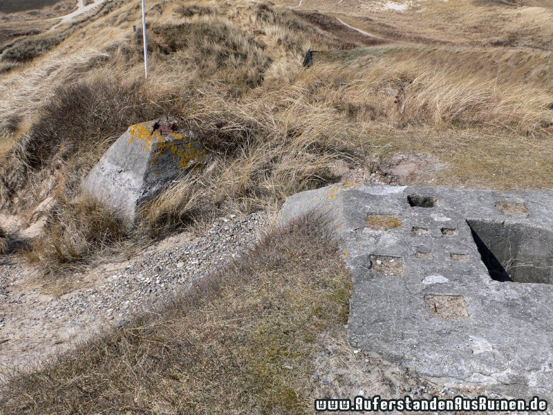 http://www.auferstandenausruinen.de/wp/wp-content/gallery/ringelnatter-radar-wassermann/p1130139.jpg