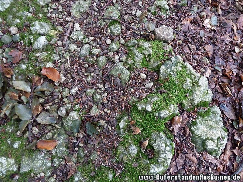 http://www.auferstandenausruinen.de/wp/wp-content/gallery/romische-wall-graben-anlage/p1090384.jpg
