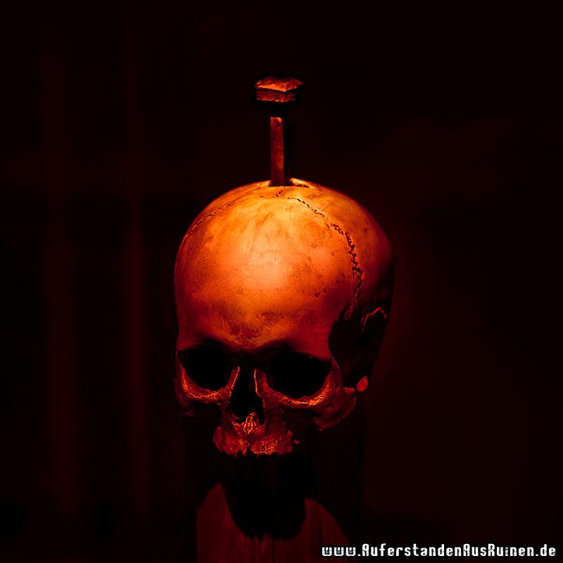 https://www.auferstandenausruinen.de/wp/wp-content/gallery/ubersichtsbilder/aar-skull-gross-neu.png