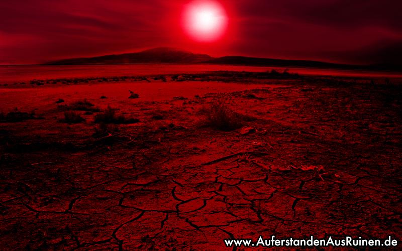 http://www.auferstandenausruinen.de/wp/wp-content/gallery/ubersichtsbilder/hitzepause.jpg