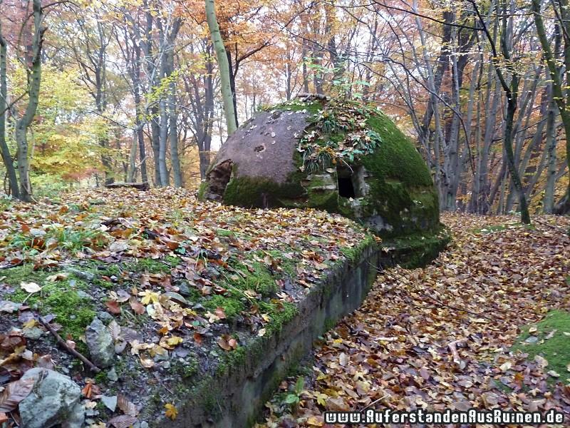 http://www.auferstandenausruinen.de/wp/wp-content/gallery/ubungsbunker/p1060735.jpg