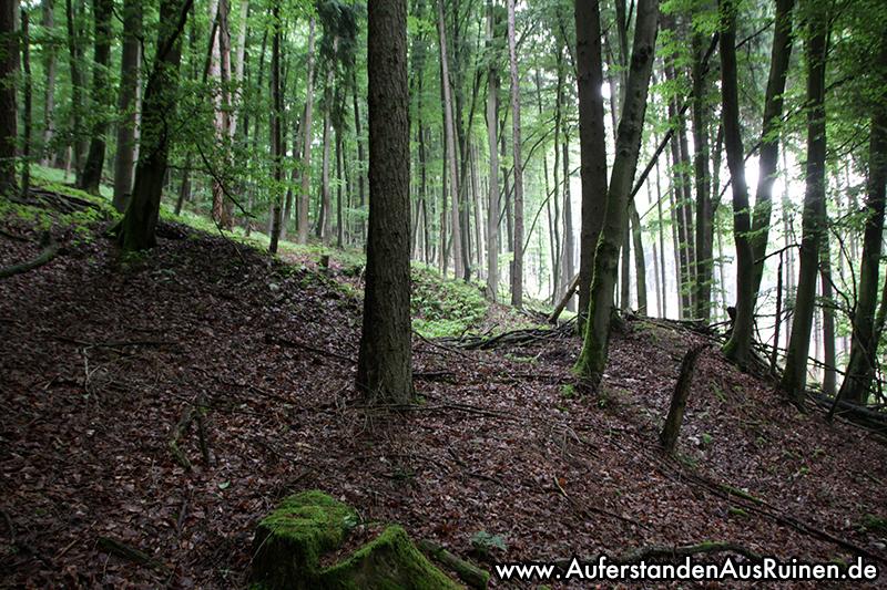 http://www.auferstandenausruinen.de/wp/wp-content/gallery/unbekannte-strukturen/IMG_0441.JPG
